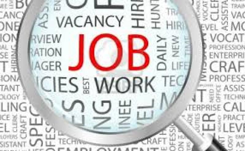 Europenii caută români dornici de muncă!