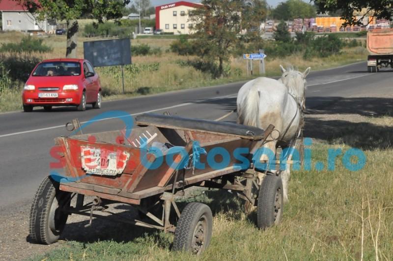 Femeie rănită în urma unui accident produs de un șofer de 80 de ani!