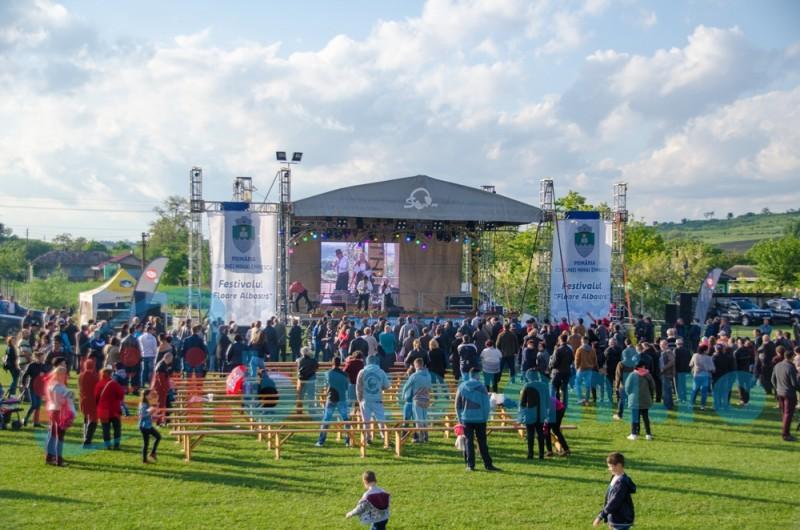 """Festivalul """"Floare Albastră"""" nu va mai avea loc acest an"""