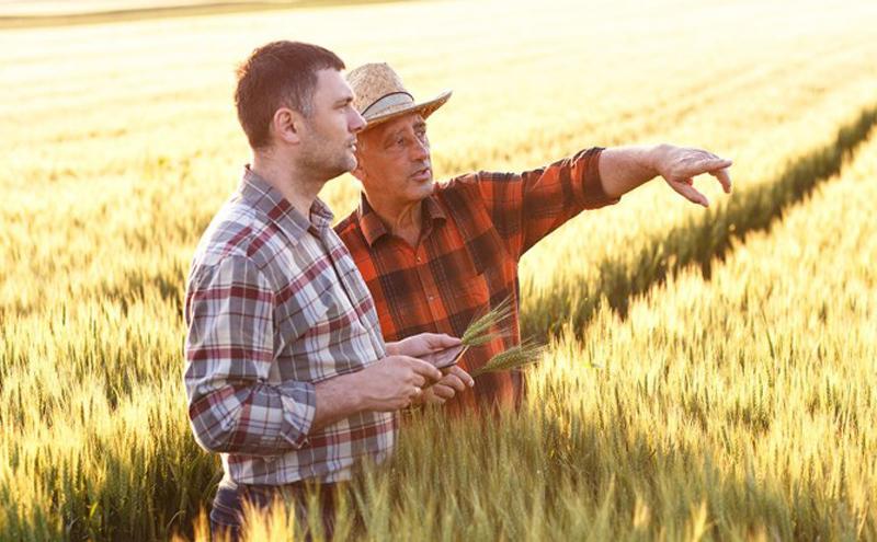 Final de campanie pentru depunerea cererilor unice de plată la subvenții pe 2021: 30.034 de fermieri au depus cereri pentru o suprafață de 284914.11 hectare
