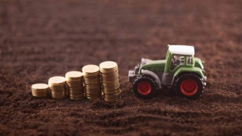 Finanţare de la stat de 70.000 euro nerambursabili pentru tinerii fermieri. Când pot depune cererile şi care sunt condiţiile