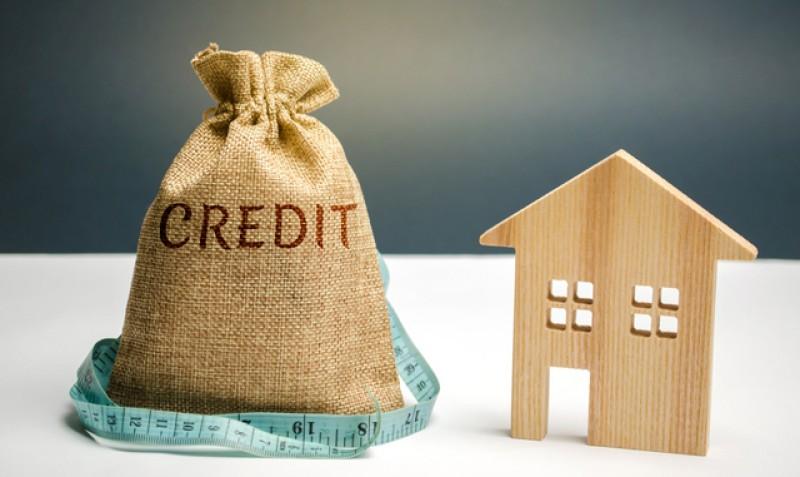 FNGCIMM insistă în fața băncilor să se amâne ratele pentru românii cu credite prin Prima Casă