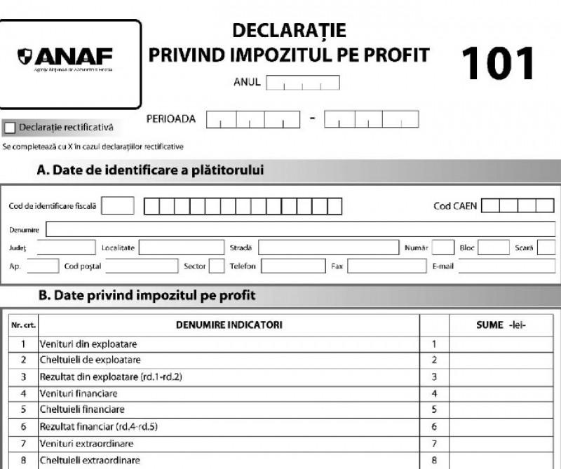 Formularul 101: Cum corectăm greșelile din declarația de profit transmisă Fiscului?