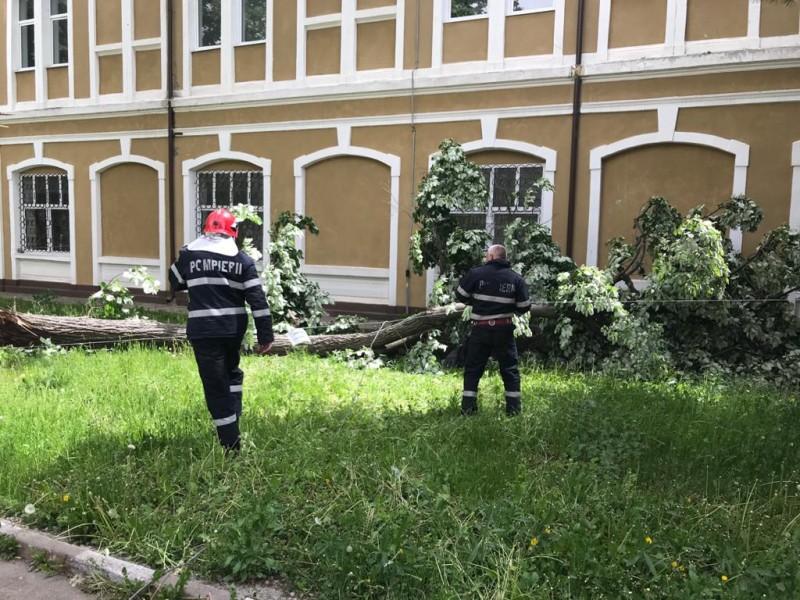 FOTO: Vijeliile creează pagube însemnate și pericole în Botoșani. Șase intervenții în trei ore ale pompierilor