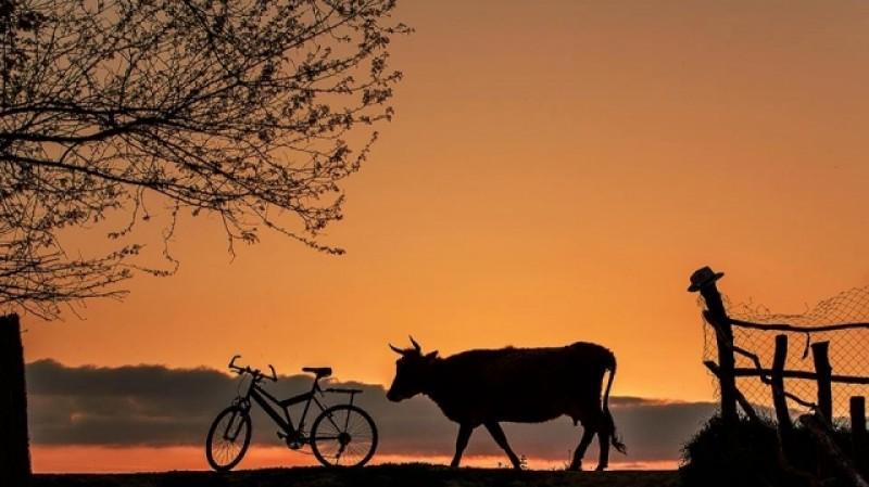 Fotograful satului românesc vine la Botoșani. Nordul extrem al României, tema unei școli de vară gratuite