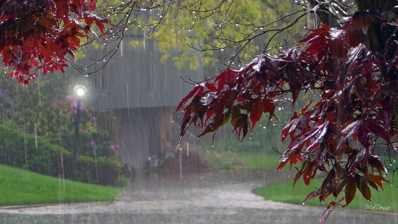 Frig și ploi, cu temperaturi de zero grade. Cum va fi vremea în următoarele două săptămâni!