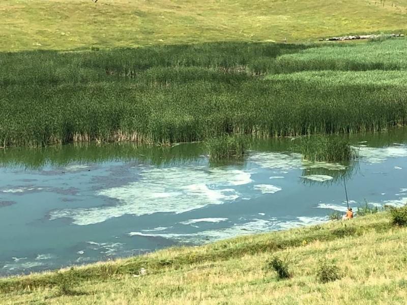 Garda de Mediu: Deteriorarea calității apei în acumularea Curtești are cauze naturale