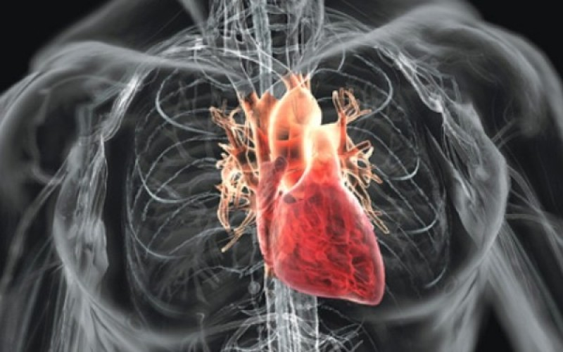 Gaura în inimă, ce este și cum se tratează. Simptomele care ar trebui să-ți dea de gândit