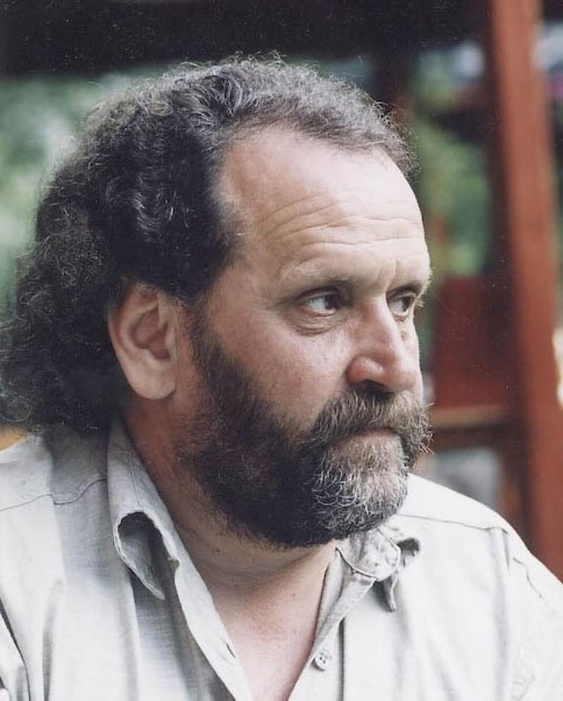 Gellu DORIAN - Scriitorul