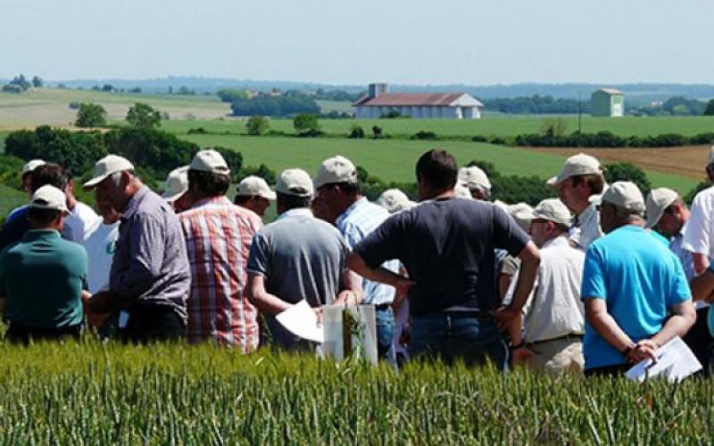 Gospodările ţărănești vor fi scutite de la plata impozitului pe terenuri şi clădiri dacă întră în cooperativele agricole