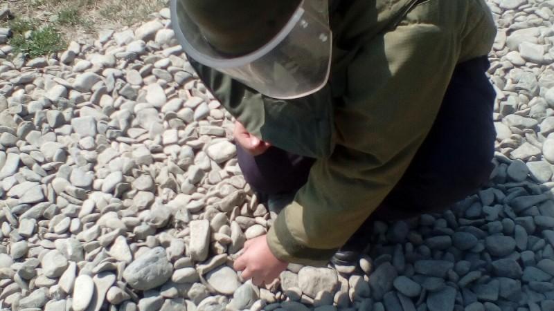 Grenadă găsită în balastul drumului! FOTO