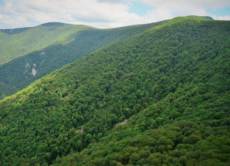 Harta parcurilor naționale și naturale administrate de Romsilva publicată pe pagina de internet a regiei