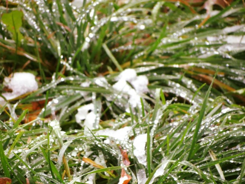 Iarna ne mai da un ragaz. Vremea se incalzeste
