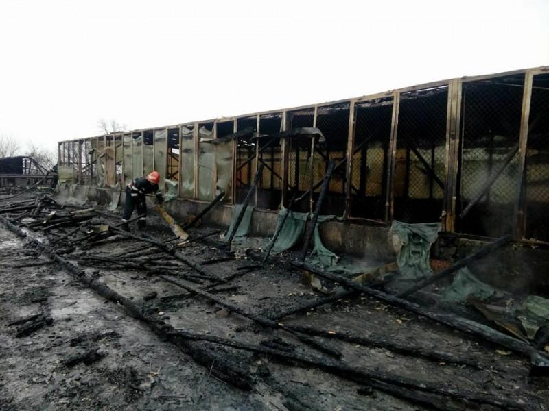 IMAGINI cu fosta fabrică UPSS, după stingerea incendiului! Vezi cum arată! FOTO