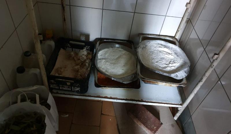 Imaginile dezastrului din bucătăriile restaurantelor din Botoșani. Sute de kilograme de alimente alterate, condiții mizere