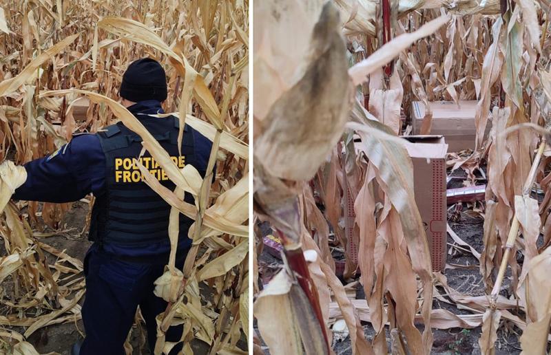 Încă un contrabandist a fost reţinut de către poliţiştii de frontieră. Tocmai îşi abandona baxurile cu țigări în lanul de porumb