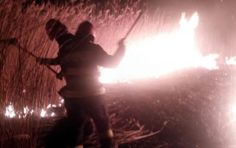 Incendiu de vegetație uscată pe 10 hectare la Siliștea, în Stăuceni