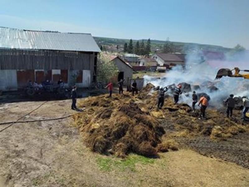 Incendiul de la Crasnaleuca, stins după aproape 5 ore! FOTO