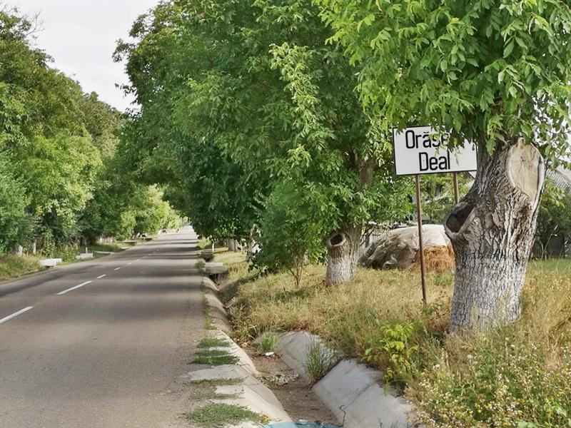 Panouri de semnalizare amplasate greșit pe drumul Orășeni Deal-Vorona - FOTO
