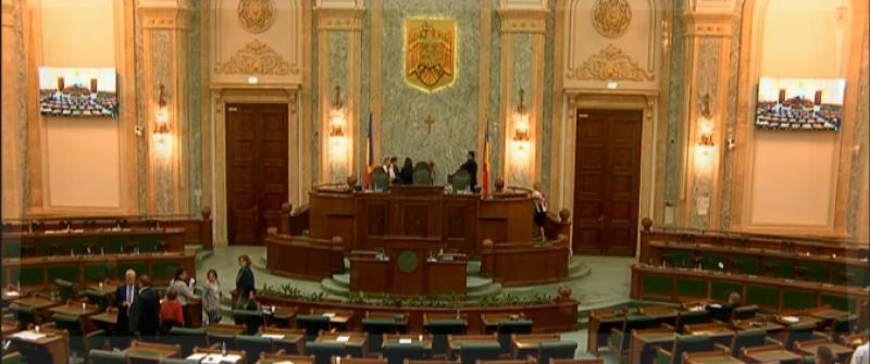 Inițiativa cetățenească de redefinire a căsătoriei în Constituție a fost adoptată de Senat