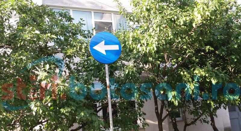 """Semnalizare rutieră deficitară, reclamată de instructorii auto din Botoșani. """"Sunt semne puse în copaci"""""""