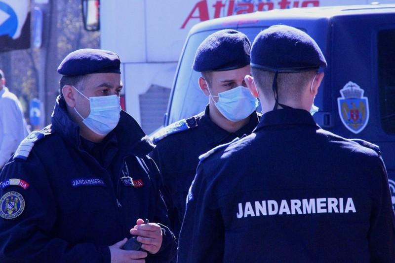 Intervenții ale jandarmilor în două comune din județ, din cauza unor animale (video)