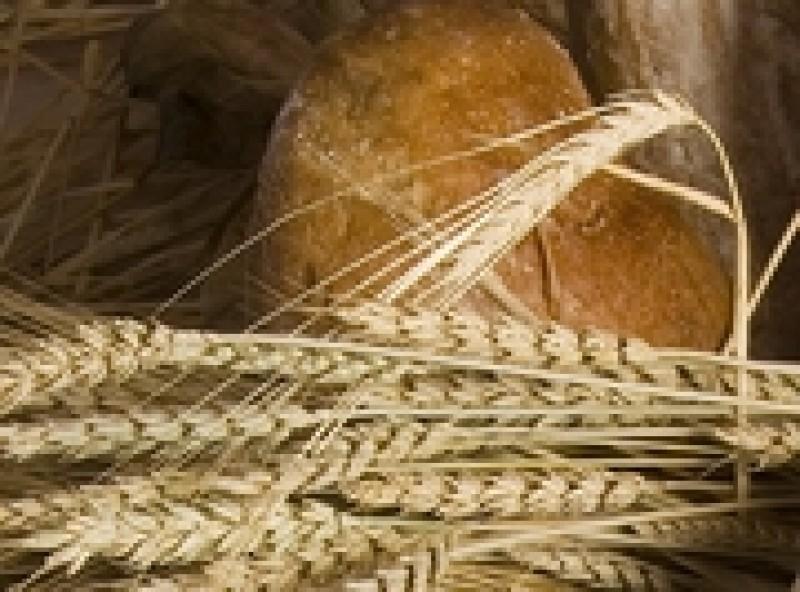 Învață să prepari acasă pâinea pustnicească!