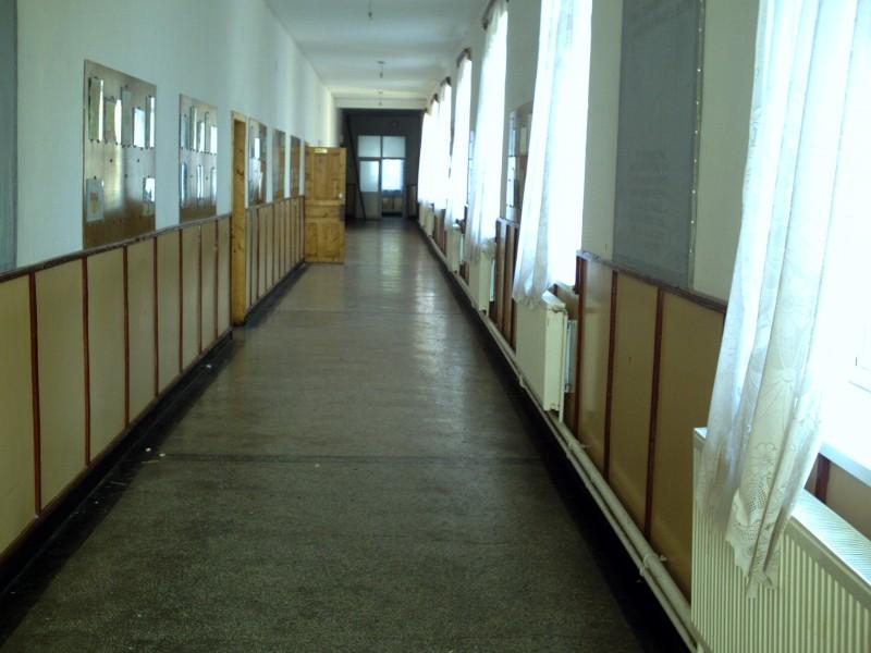 """IȘJ: 21 de unități de învățământ din Botoșani funcționează pe scenariul """"roșu"""""""