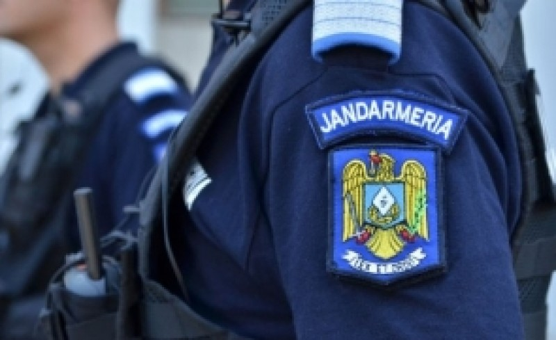 Jandarmi atacaţi de urs în Suceava