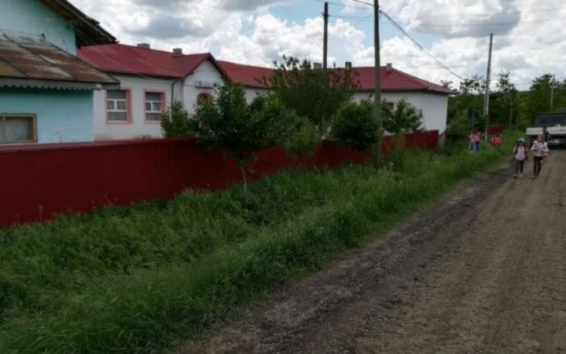 Județul Botoșani, singurul din țară unde în fiecare generație se pierd 3000 de elevi. Zece școli au fost închise în ultimii doi ani