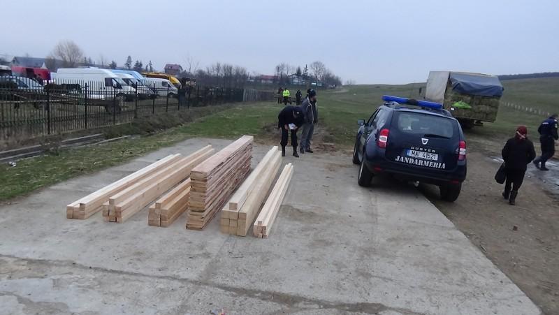 Lemn confiscat de jandarmi, la Copălău! Patru persoane au primit amenzi usturătoare! FOTO