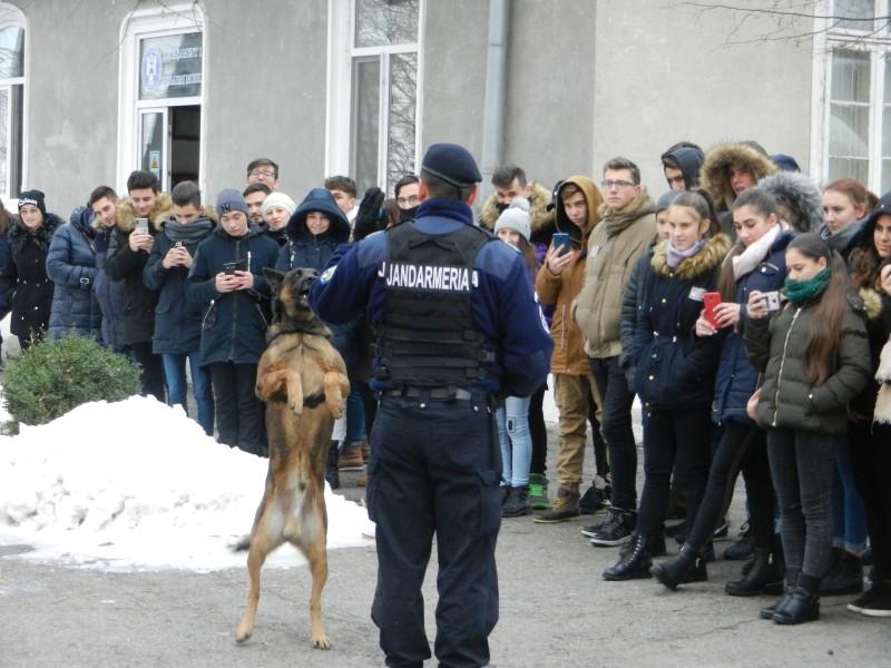 Liceeni în vizită la Jandarmeria Botoşani. Câinele Pih a fost atracția întâlnirii - FOTO