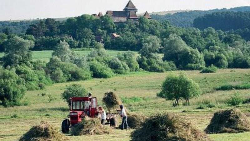 Liviu Dragnea: Vom intra cu un proiect de lege prin care să ajutăm românii să cumpere terenuri agricole