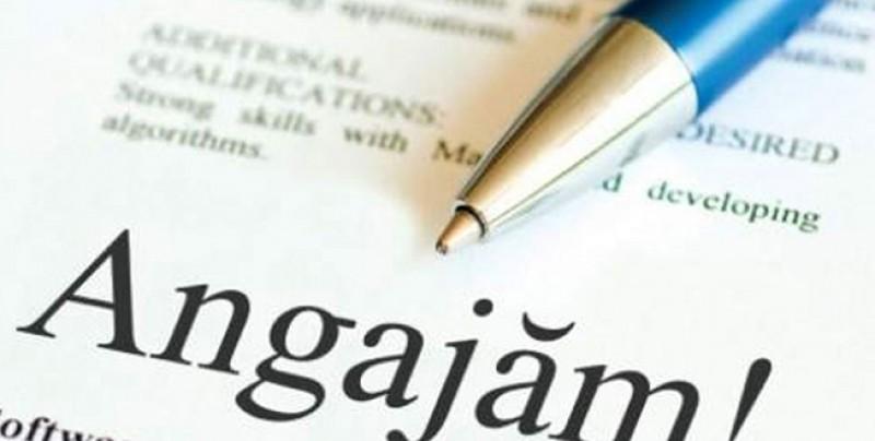 Locuri de muncă în județul Botoșani: Inginerii sunt la mare căutare, dar pe salarii mici!