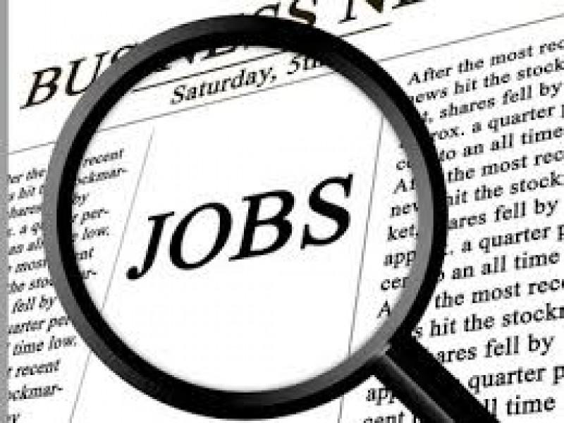 Locuri de muncă pentru botoșăneni. Ofertă săracă pentru șomerii cu studii superioare!