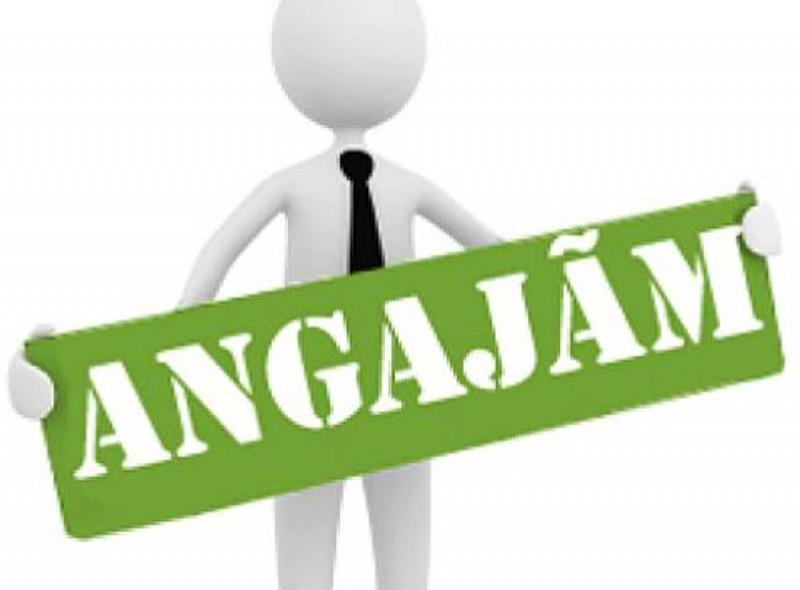 Locuri de muncă vacante în Botoșani - Inginerii primesc oferte și din alte județe!