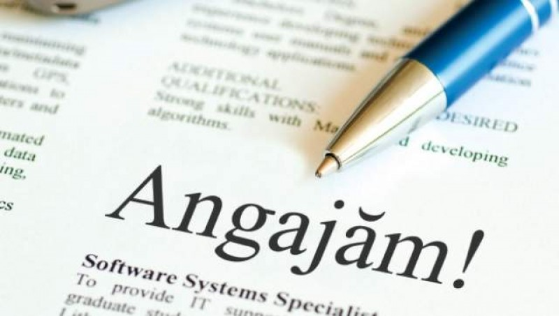 Locuri de muncă vacante în Botoșani! VEZI OFERTA