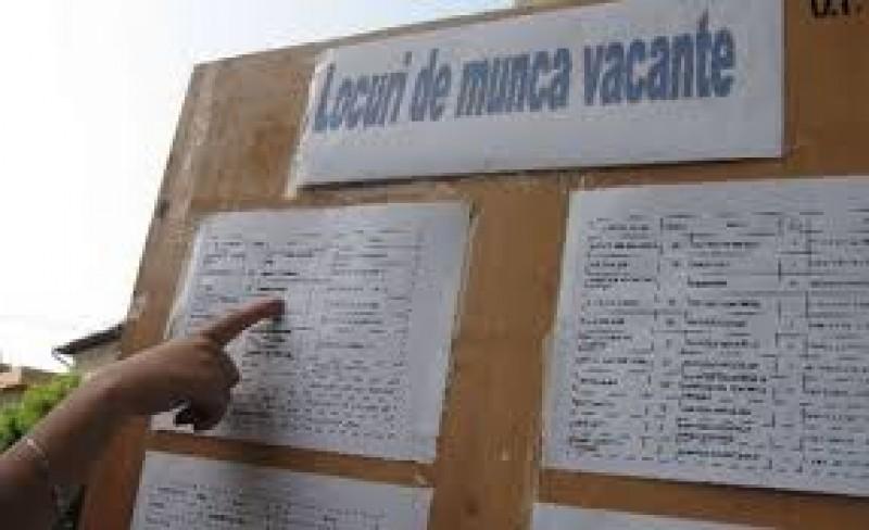 Locuri de muncă vacante, în județul Botoșani!