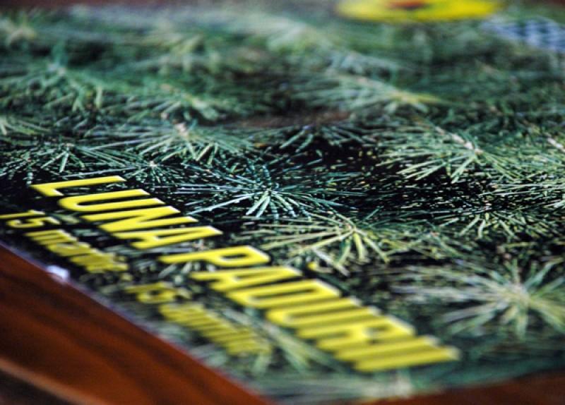 Luna plantării arborilor, la Botoșani!