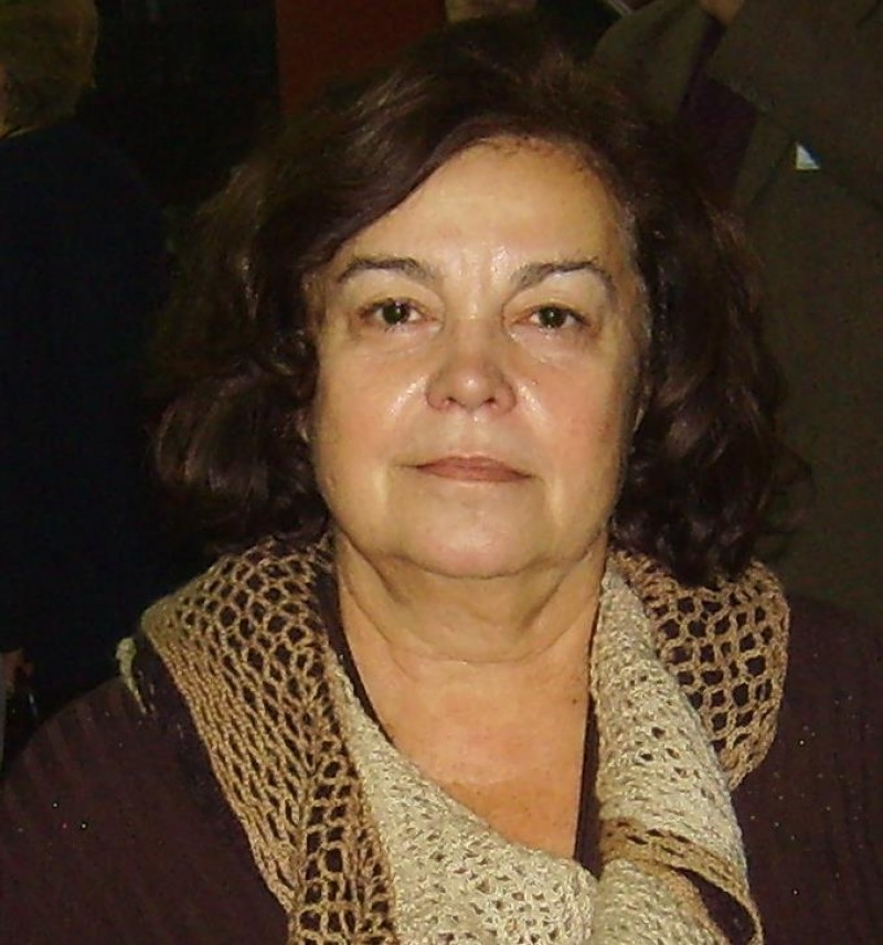 Magda Ursache: Războiul imaginii