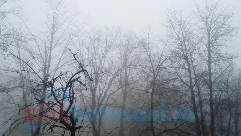 MAI, după avertizările meteo: Structurile de pompieri, poliţie şi jandarmerie, pregătite să intervină