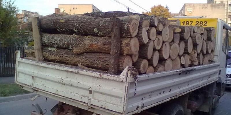 Material lemnos confiscat de polițiștii secției din Hlipiceni și transportator amendat