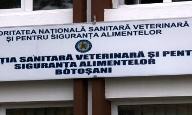 Medicii veterinari de la Botoșani au protestat la DSVSA