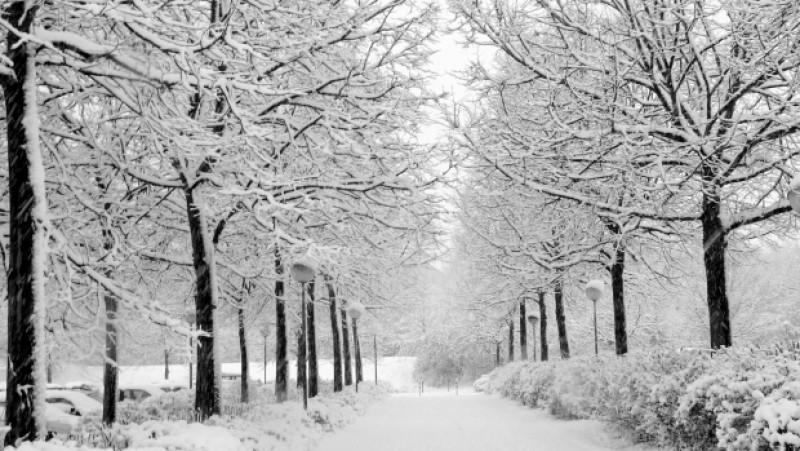 Meteo: Dupa ninsori vin doua zile cu ger. Câte grade vor fi la Botoșani!