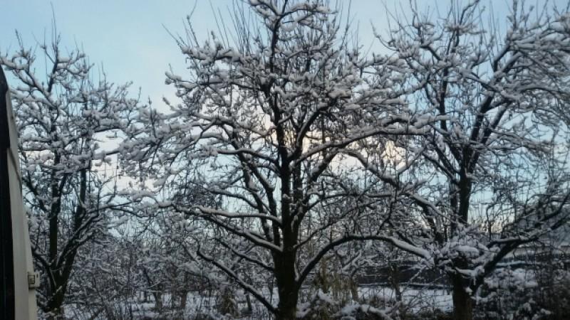 Meteo: Joi scăpăm de ninsori, iar vineri se încălzește puțin