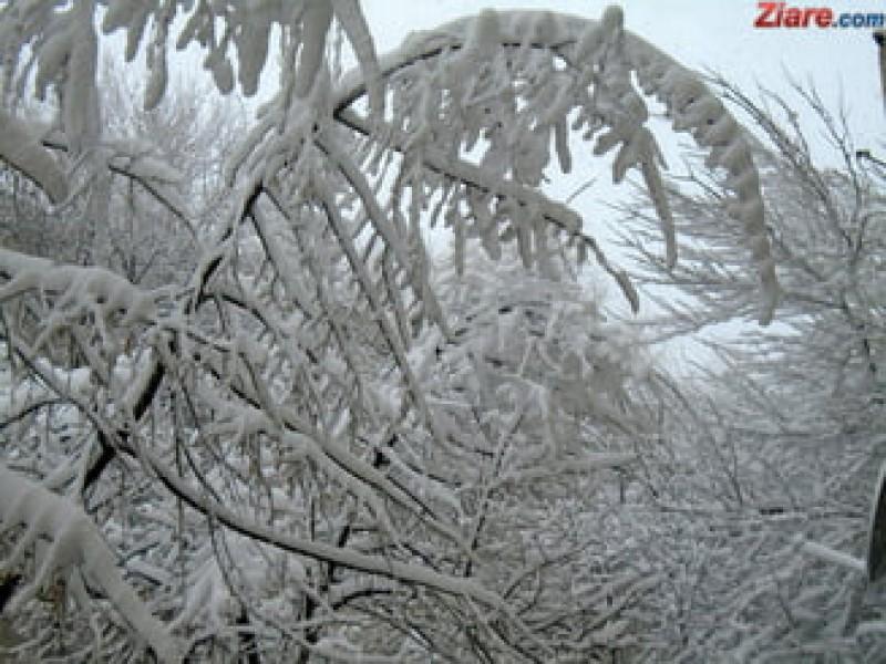 Meteo: Zile cu soare, dar și ninsori. Cum va fi vremea în Botoșani