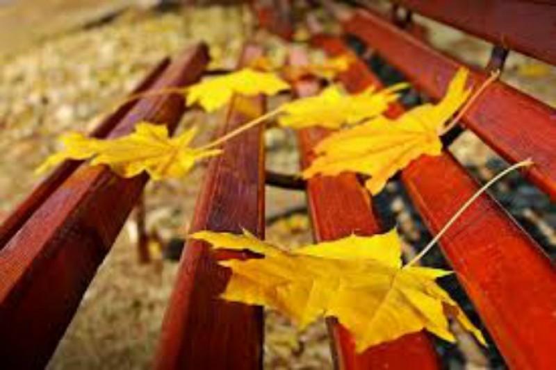 Meteorologii au emis prognoza meteo pentru începutul de noiembrie - Frig în Moldova