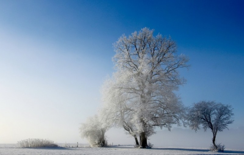 Meteorologii au făcut primele estimări - Ne așteaptă o iarnă lungă. Fenomene extreme sunt așteptate în luna martie
