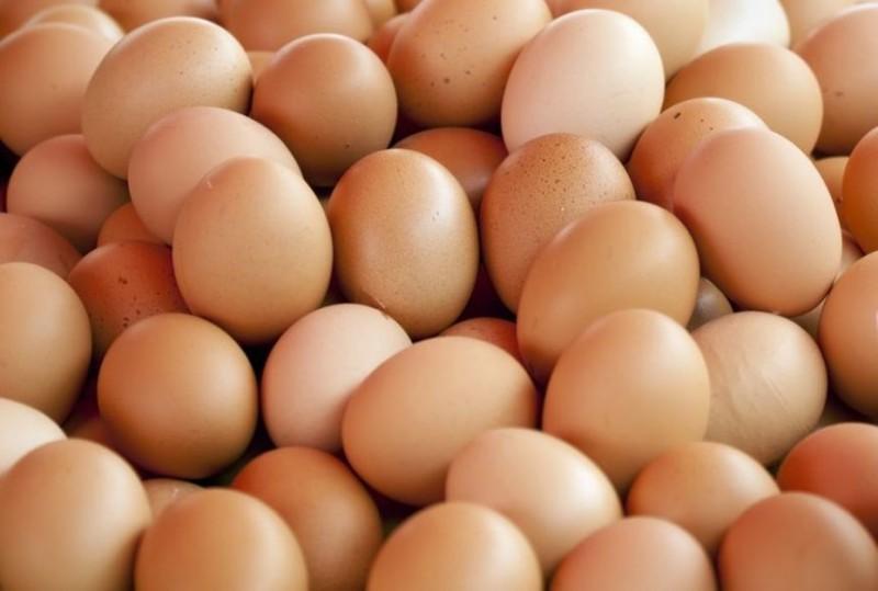 Milioane de ouă retrase de pe rafturile magazinelor din Germania, Olanda şi Belgia din cauza contaminării cu insecticid; substanţa ar fi putut fi cumpărată din România