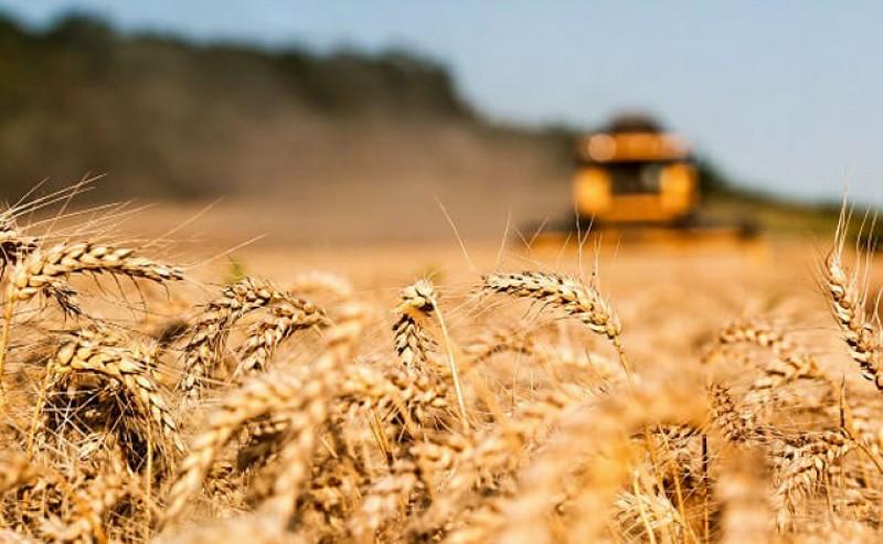 """Ministerul Agriculturii schimbă legislația în acordarea subvențiilor! """"În agricultură există vânători de subvenții. Nu vor performanță, ci doar să încaseze banii"""", spune ministrul Oros."""